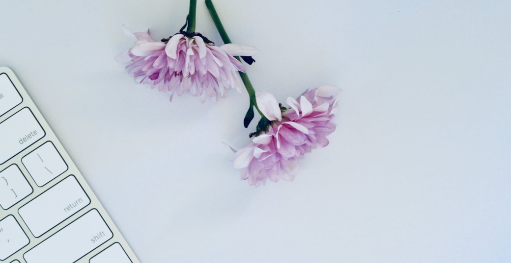two purple flowers and white keyboard